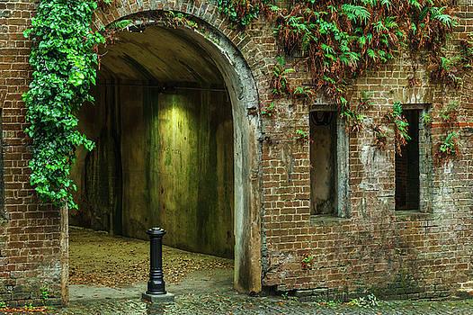 Savannah Haunted Tunnels by Steven Bateson