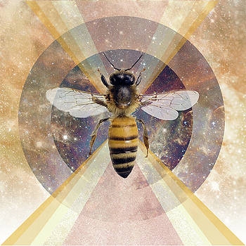 Save the Bees by Lori Menna