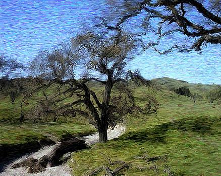 Kurt Van Wagner - Save The Oaks