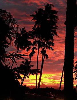 Savu Savu Sunset by Diane Bombshelter