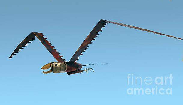 Saw Bird -Raptor by Bill Thomson