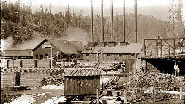 California Views Mr Pat Hathaway Archives - Saw Mill and milled lumber circa 1900