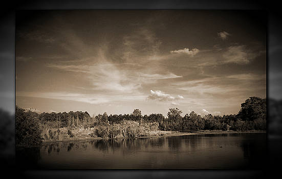Sawgrass Lake by Phil Penne