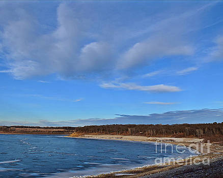 Saylorville Beach by Kathy M Krause