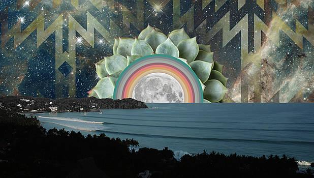 Sayulita Succulent Moonrise by Lori Menna