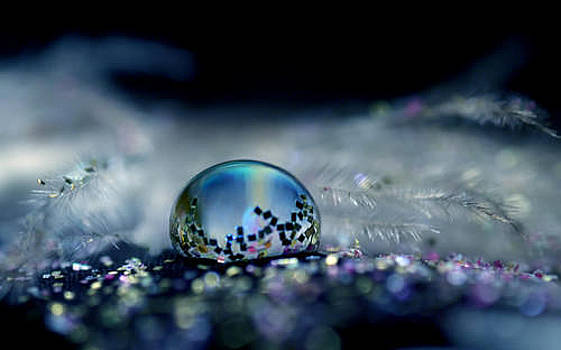 S.basavaraj Ireland - The reflection in this water droplet by S BasavaRaj Ireland