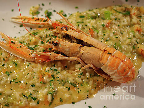 Scampi risotto by Louise Heusinkveld