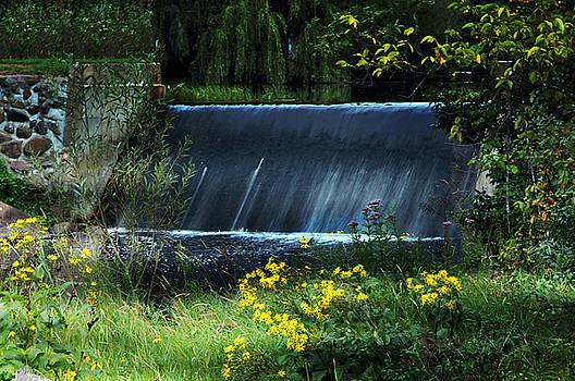 Scandinavia  Dam by Judy  Johnson