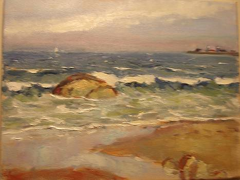 Scarborough Beach by Tom Martino