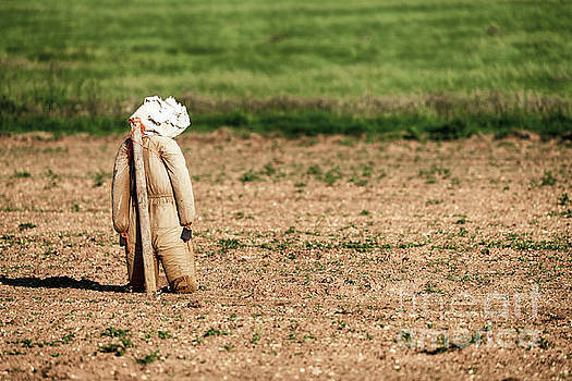 Scarecrow leaning on a post scarying birds by Simon Bratt Photography LRPS