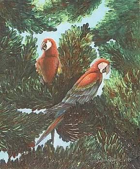 Scarlet Macaw Tree by Susan Elizabeth Wolding