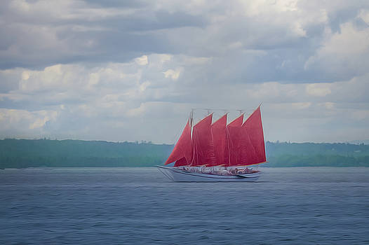 Scarlet Sails by Elvira Pinkhas