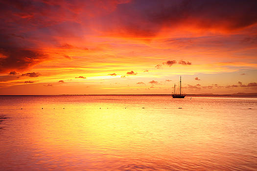 Ellie Teramoto - Scarlet Sunset Over The Ocean - Bonaire, Dutch Caribbean