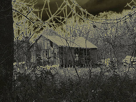 Scary Barn by Diane Paulhamus