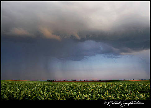 Scary Storm by Melinda Swinford