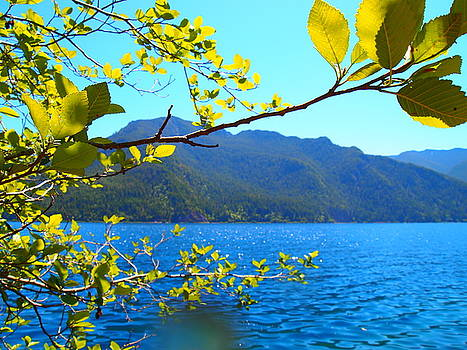 Scenery of Crescent Lake by Keelee Martin
