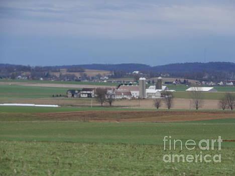 Christine Clark - Scenic April Amish Vista