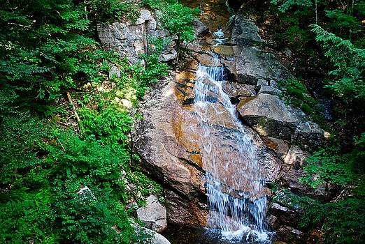Scenic Cascading Waterfall  by Suzanne McDonald