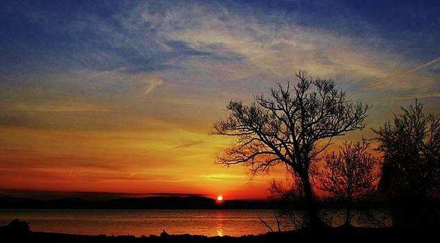 Scenic Hudson Sunrise by Thomas McGuire