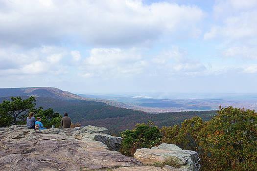 Scenic Overlook by Tammy Chesney