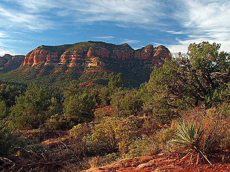 Scenic Sedona by James Peterson
