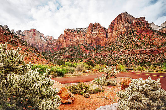 Scenic View at Zion National Park  by Daniela Constantinescu