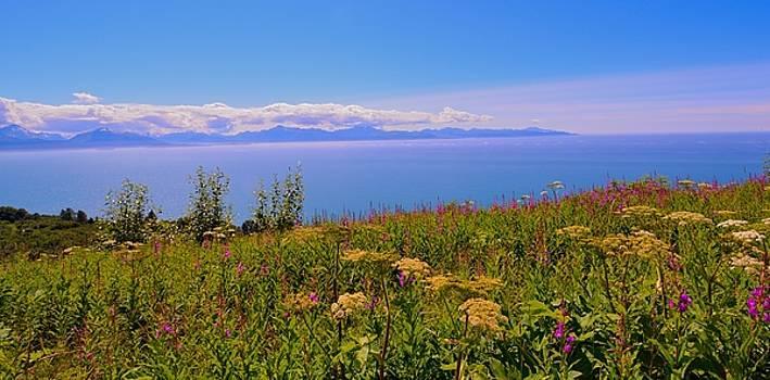 Patricia Twardzik - Scenic Vistas of Alaska