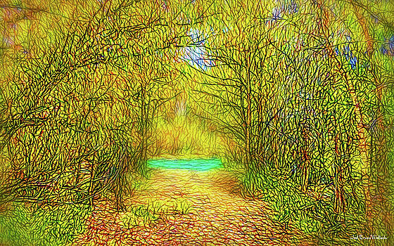 Scent Of Forest Path by Joel Bruce Wallach