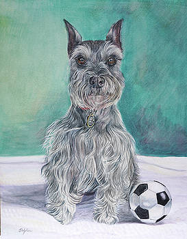 Schnauzer with Ball by Gail Dolphin