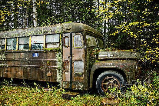 School Bus Camp by Alana Ranney