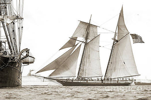 Schooner Lynx Full Sail by Dustin K Ryan