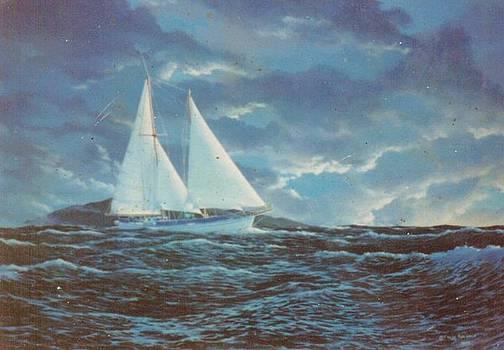 Schooner Machias-Maui by Leif Thor Kvammen
