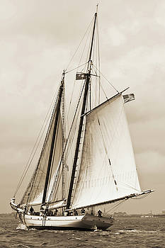 Schooner Sailboat Spirit of South Carolina Sailing by Dustin K Ryan