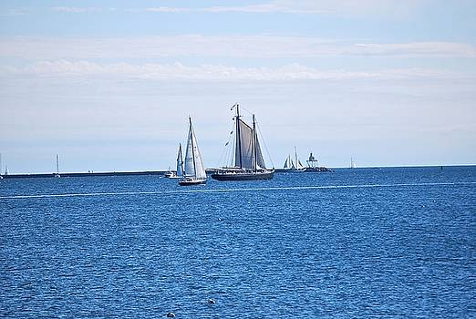 Schooners Converge  by Suzanne McDonald