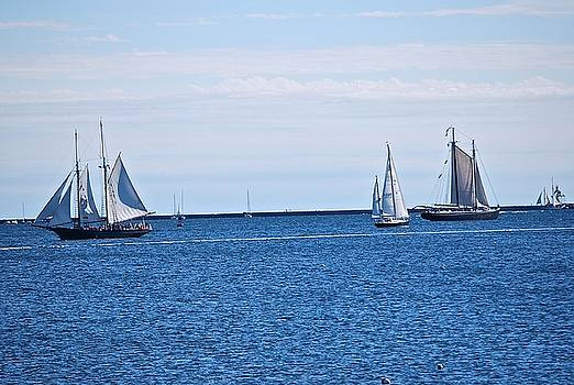 Schooners Day  by Suzanne McDonald