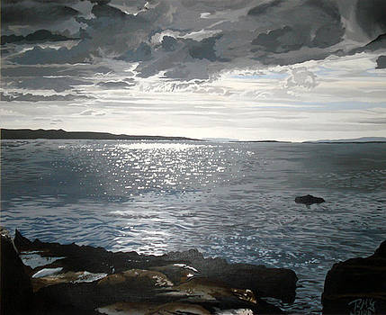 Schull open sea view by Rick McGroarty
