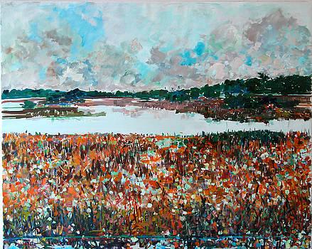Scintillating Reeds by Zolita Sverdlove