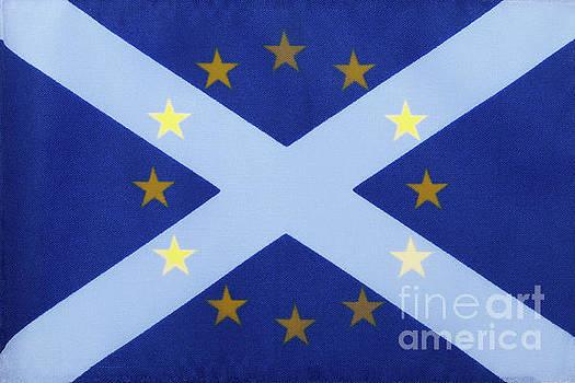 Scotland's Desire by Diane Macdonald