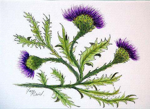 Scotlands Flower by Fay Reid