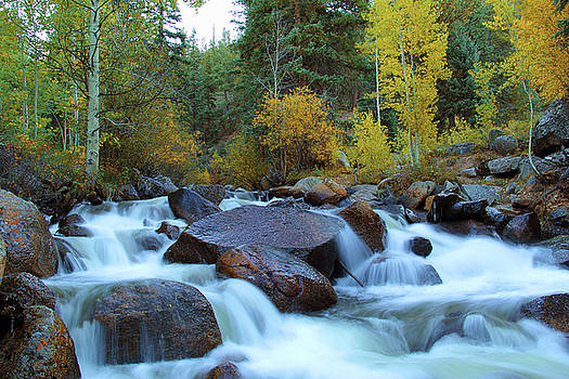 Scott Gomer Creek at Guanella Pass by Marie Leslie