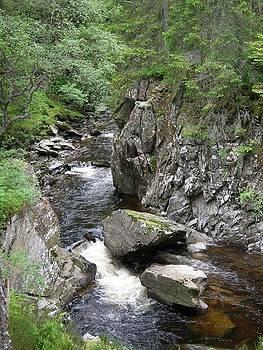 Scottish Stream by Jessica Hoover