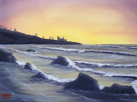 Scottish Tide by David  Barnes