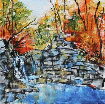 Scotts Run Waterfall 201829 by Alyse Radenovic