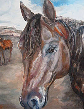 Scotty The Roping Horse by Angela Craver