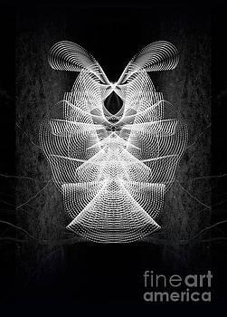 Screaming Luna Moth by Brian Jones