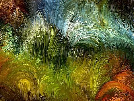 Scrub vegetation by Rafi Talby