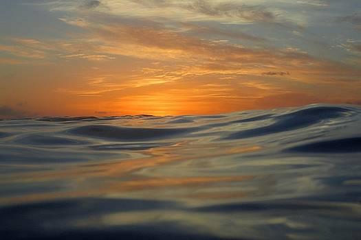 Scuba sunset by Jennifer Ansier