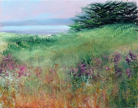 Sea Bluffs by Sally Seago
