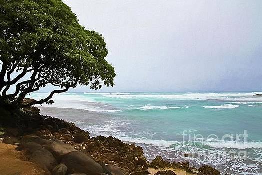 Jon Burch Photography - Sea Breeze