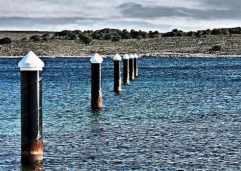 Pedro Cardona Llambias - Sea centinels